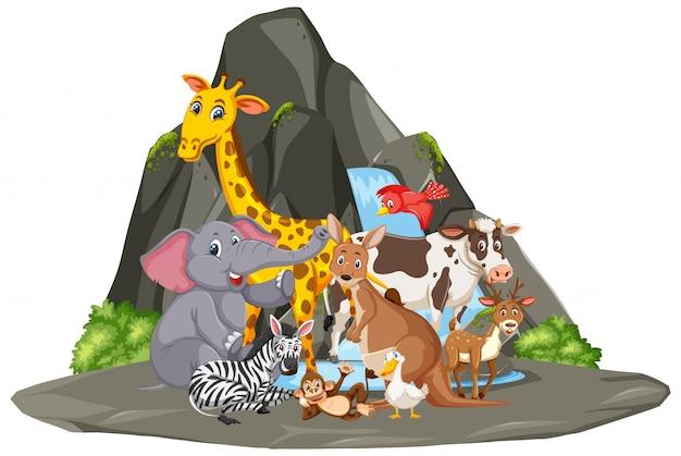 Scena Z Wieloma Dzikimi Zwierzętami Przy Wodospadzie Premium Wektorów
