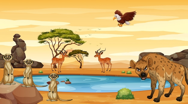 Scena Z Wieloma Zwierzętami Nad Stawem Darmowych Wektorów