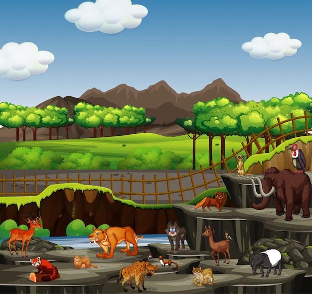 Scena z wieloma zwierzętami w otwartym zoo Darmowych Wektorów