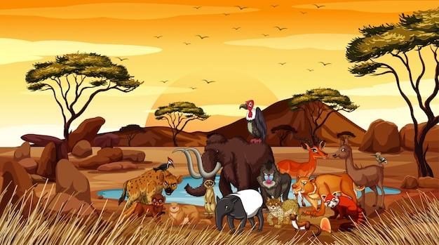 Scena Z Wieloma Zwierzętami W Terenie Darmowych Wektorów