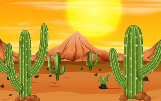 Scena zachodu słońca pustyni Darmowych Wektorów