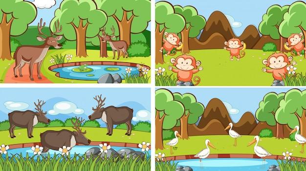 Sceny Ilustracyjne Dzikich Zwierząt Darmowych Wektorów