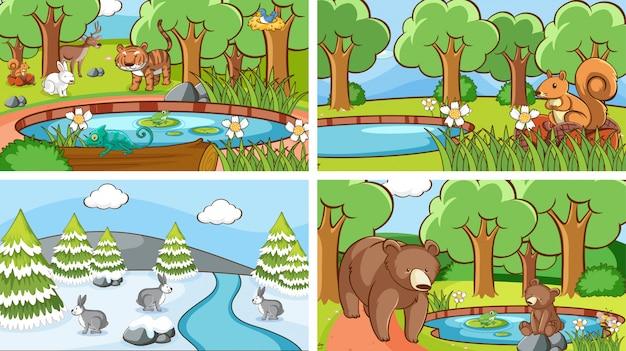 Sceny Z Dzikimi Zwierzętami Darmowych Wektorów