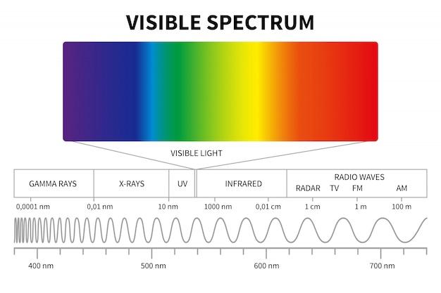 Schemat światła Widzialnego. Kolorowe Spektrum Elektromagnetyczne, Częstotliwość Fali świetlnej. Premium Wektorów