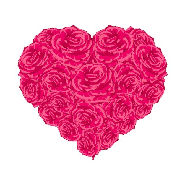 Serce Pączek Róży Na Białym. Darmowych Wektorów