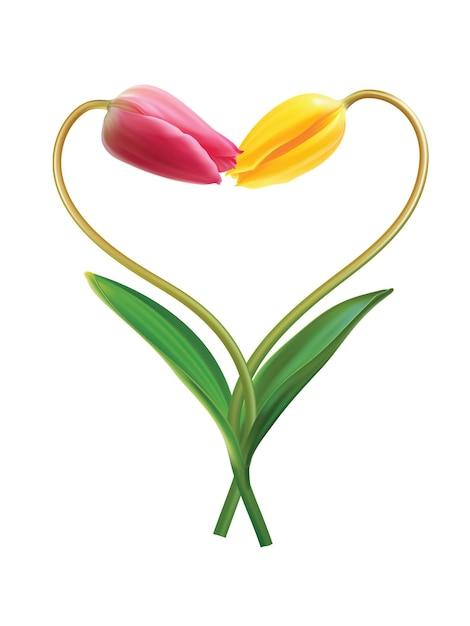 Serce Z Dwóch Tulipanów Pomysł Na Walentynki Premium Wektorów