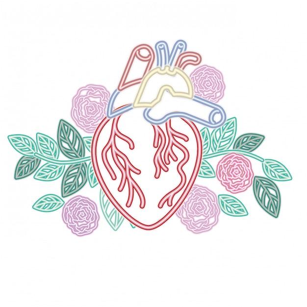 Serce Z żył I Kwiaty Na Białym Tle Ikona Premium Wektorów