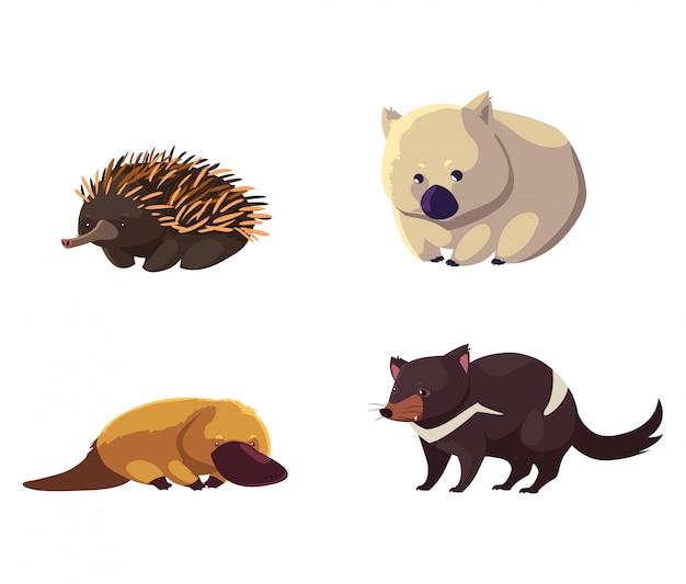 Set Dzikie Zwierzęta Australia Na Białym Tle Premium Wektorów