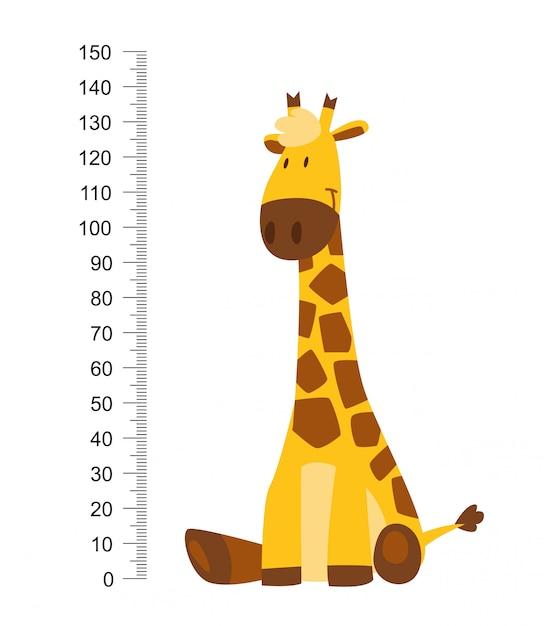Siedząc Wesoła śmieszna żyrafa Z Długą Szyją. Miernik Wysokości Lub Metr Naklejki ścienne Lub ścienne Od 0 Do 150 Centymetrów Do Pomiaru Wzrostu. Premium Wektorów