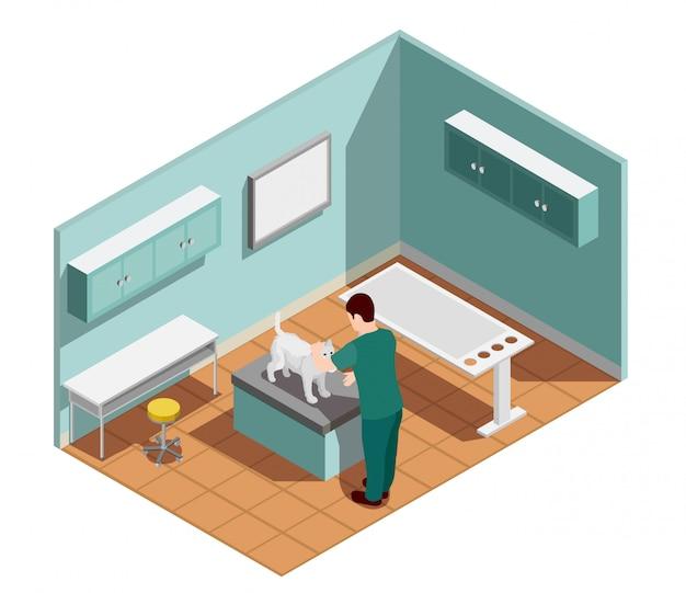 Skład Izometryczny Kliniki Weterynaryjnej Darmowych Wektorów