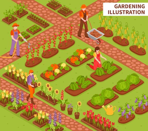 Skład Izometryczny Ogrodnictwo Darmowych Wektorów