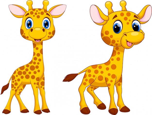 Śliczna żyrafa Kreskówka Premium Wektorów