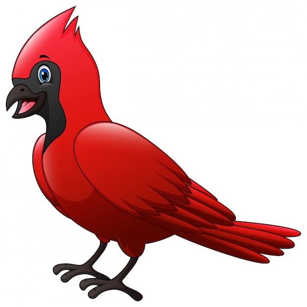 Śliczne kreskówki kardynał ptak Premium Wektorów