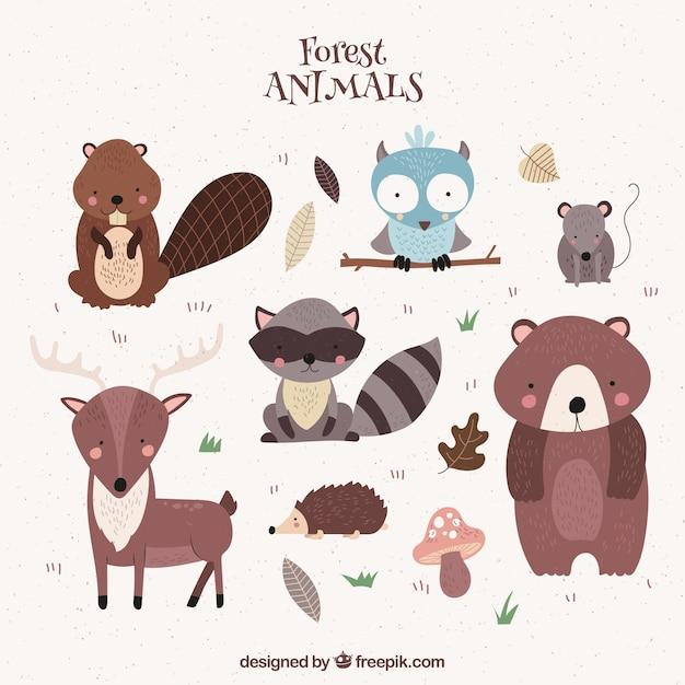 Śliczne ręcznie rysowane zwierzęta leśne Darmowych Wektorów