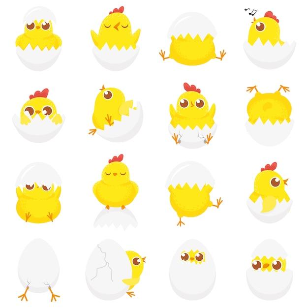 Śliczny Kurczak W Jajku, Wielkanocne Kurczątko, Nowonarodzone Kurczaki W Skorupce I Farmy Kurcząt Dzieci Na Białym Tle Zestaw Kreskówka Premium Wektorów
