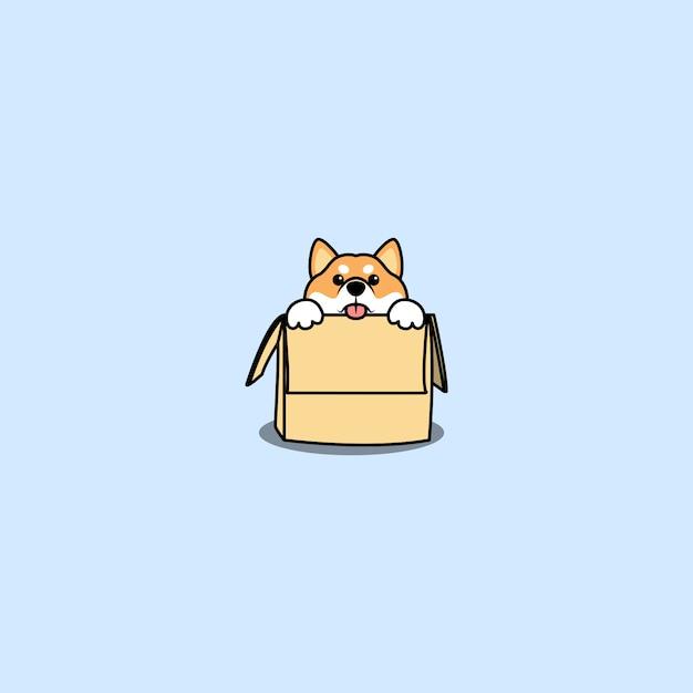 Śliczny Pies Shiba Inu W Pudełku Premium Wektorów