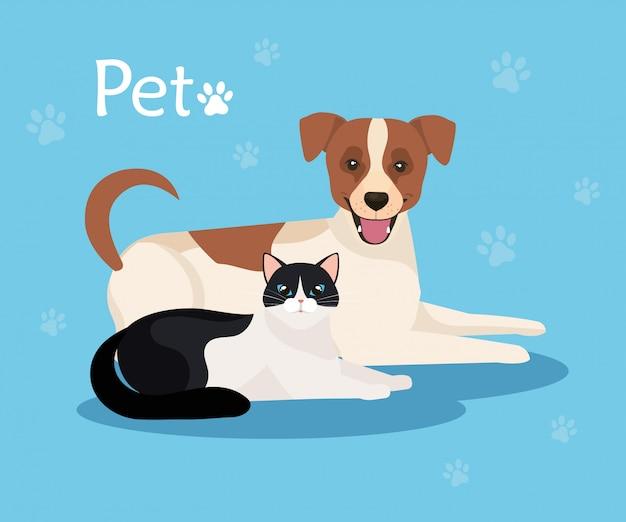 Śliczny Pies Z Kotem W Tła Błękicie Z Pawprints Premium Wektorów