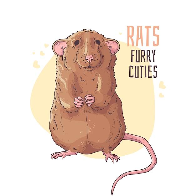 Śliczny realistyczny szczur. Premium Wektorów