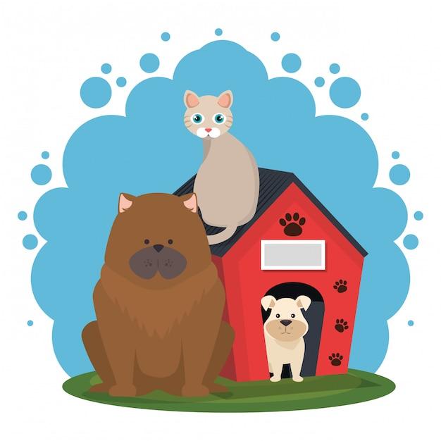 Słodkie maskotki i ikony sklepu zoologicznego Darmowych Wektorów