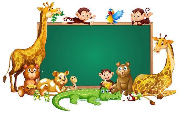 Słodkie zwierzęta chalkborad ramki Darmowych Wektorów