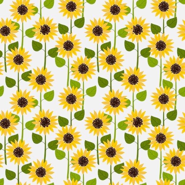 Słoneczniki na białym tle blady wzór. Premium Wektorów