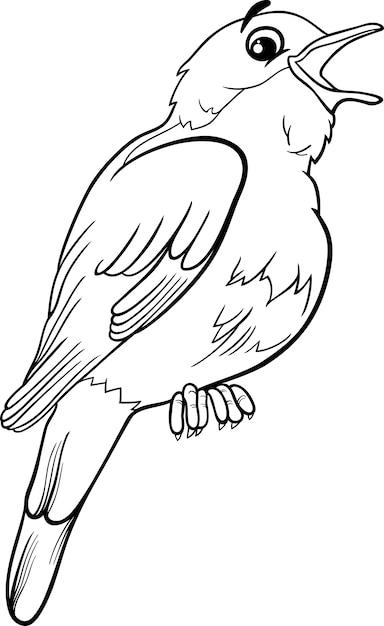 Slowik Ptak Kolorowanki Premium Wektor