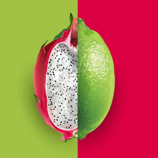 Smok Owoc I Wapno Ilustracja Premium Wektorów