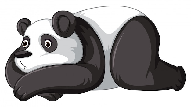 Smutna panda Premium Wektorów