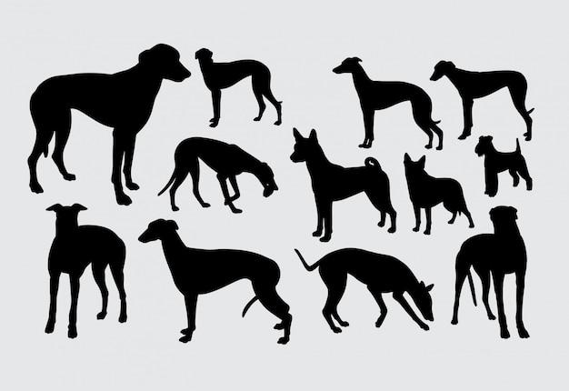 Stałego Psa Zwierzęcia Domowego Zwierzęca Sylwetka Premium Wektorów