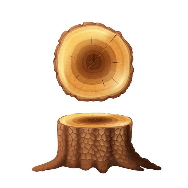 Starzy rżnięci lasowego drzewa fiszorka strony rysować i przekrój poprzeczny widoku ikony ustawiają abstrakt Darmowych Wektorów