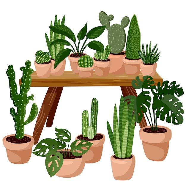 Stół z soczystymi roślinami doniczkowymi. dekoracja domu lagom. przytulny sezon. nowoczesne mieszkanie urządzone w stylu higienicznym. na białym tle obraz wektor Premium Wektorów