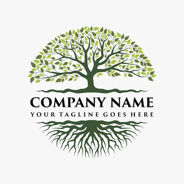 Streszczenie żywe drzewo projektowanie logo Premium Wektorów