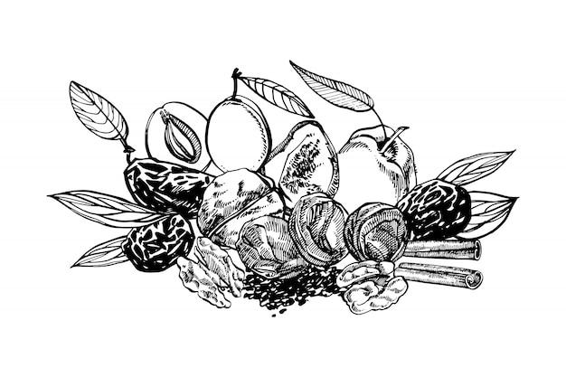 Suszone Brzoskwinie I śliwki, śliwki Ręcznie Rysowane Ilustracji Premium Wektorów