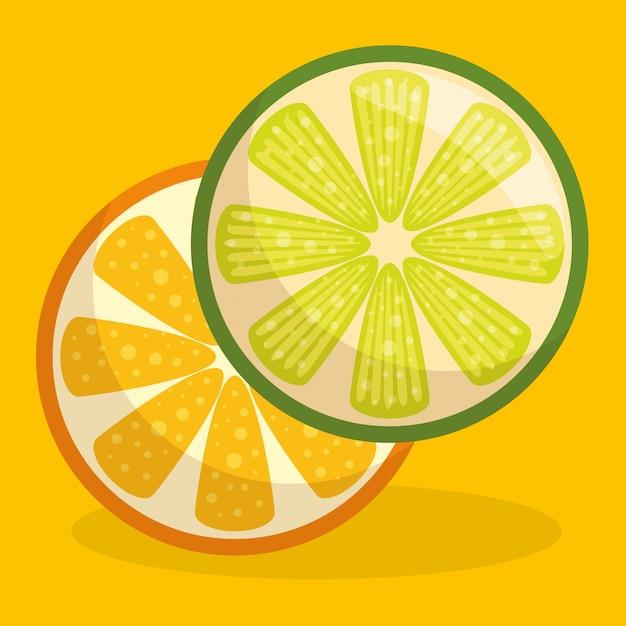Świeże owoce pomarańczy i cytryny zdrowe jedzenie Darmowych Wektorów