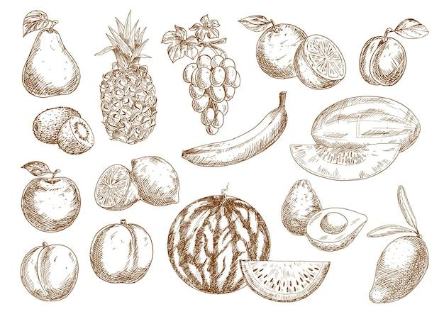 Świeżo Zebrane Pomarańcze I Banany, Jabłka I Mango, Ananasy I Brzoskwinie Premium Wektorów