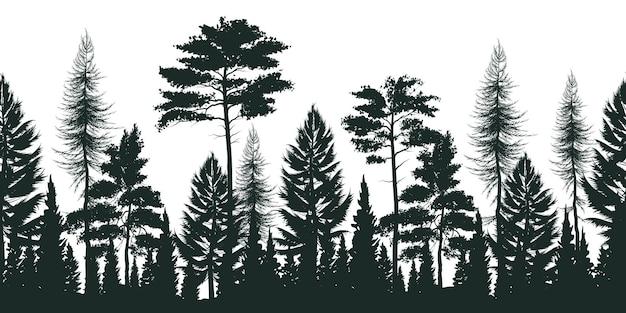 Sylwetka Sosnowy Las Z Małymi I Wysokimi Wiecznozielonymi Drzewami Na Bielu Darmowych Wektorów