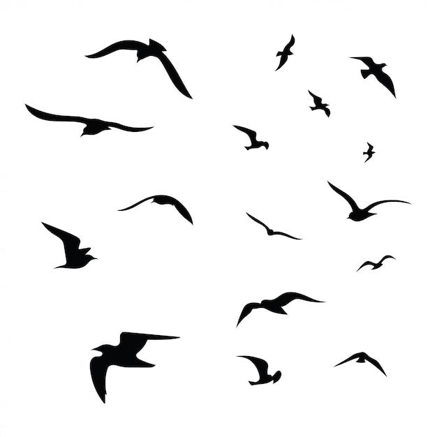 Sylwetka Stada Ptaków. Czarne Kontury Latających Ptaków. Latające Gołębie. Premium Wektorów