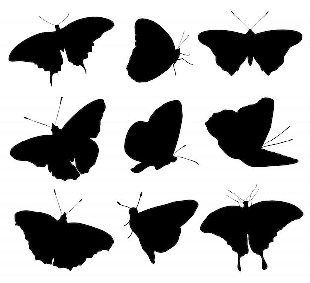 Sylwetki Buttefly Odizolowywać Na Białym Tle. Ilustracji Wektorowych Premium Wektorów