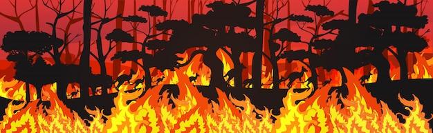 Sylwetki Kangurów Uciekających Od Pożarów Lasów W Australii Zwierzęta Giną W Pożarze Buszu Pożar Palenie Drzew Koncepcja Klęski żywiołowej Intensywne Pomarańczowe Płomienie Poziome Premium Wektorów