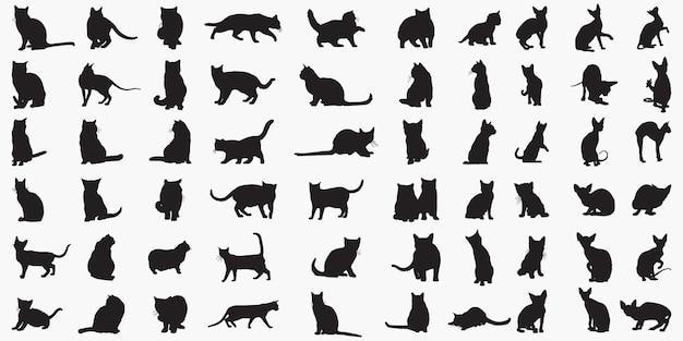 Sylwetki Kotów Premium Wektorów