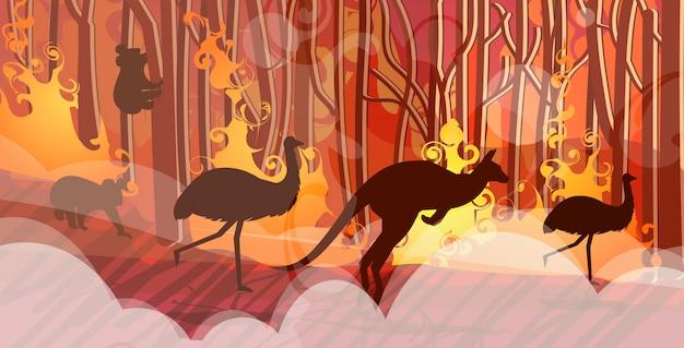Sylwetki Zwierząt Australijskich Ucieka Od Pożarów Lasów W Australii Pożar Pożar Krzak Drzewa Koncepcja Klęski żywiołowej Intensywne Pomarańczowe Płomienie Poziome Premium Wektorów