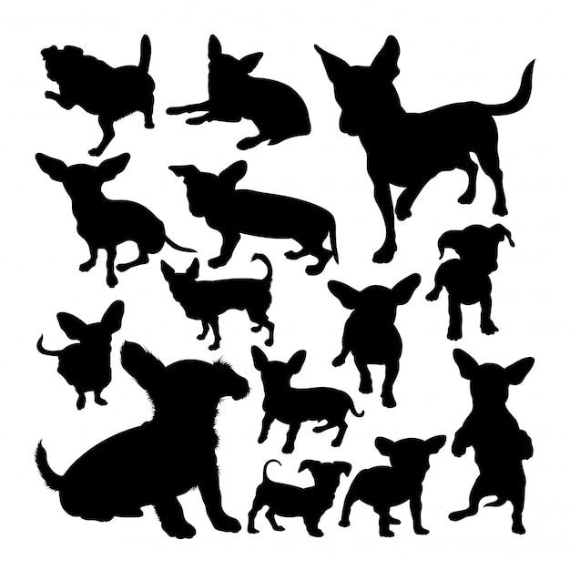 Sylwetki Zwierząt Pies Chiweenie Premium Wektorów