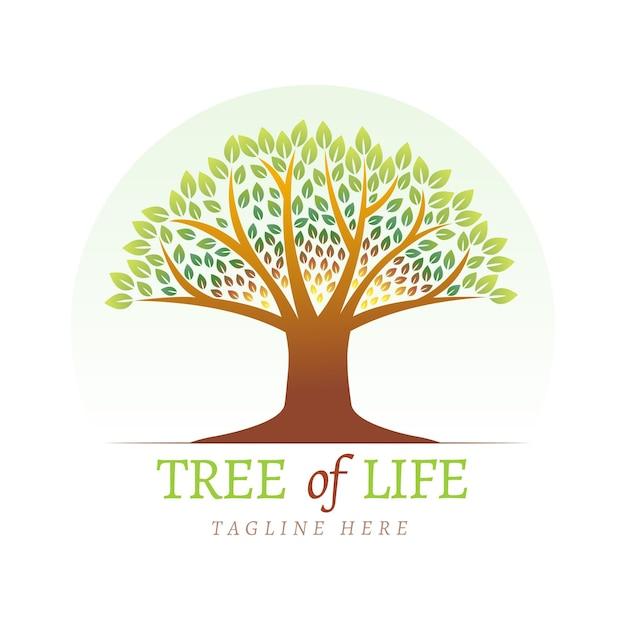 Szablon Logo Drzewa życia Darmowych Wektorów