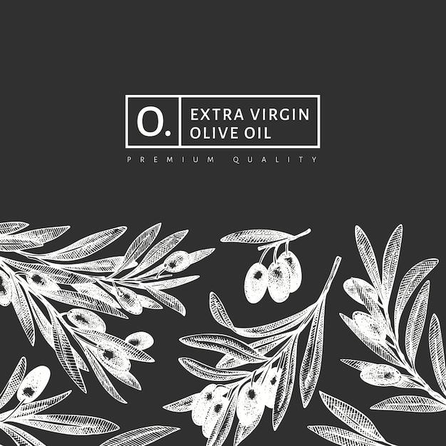 Szablon Projektu Gałązki Oliwnej. Grawerowana Roślina śródziemnomorska W Stylu. Retro Obraz Botaniczny. Premium Wektorów