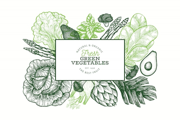 Szablon Projektu Zielone Warzywa. Ręcznie Rysowane Ilustracji Wektorowych żywności. Baner Warzywny W Stylu Grawerowanym. Retro Transparent Botaniczny. Premium Wektorów