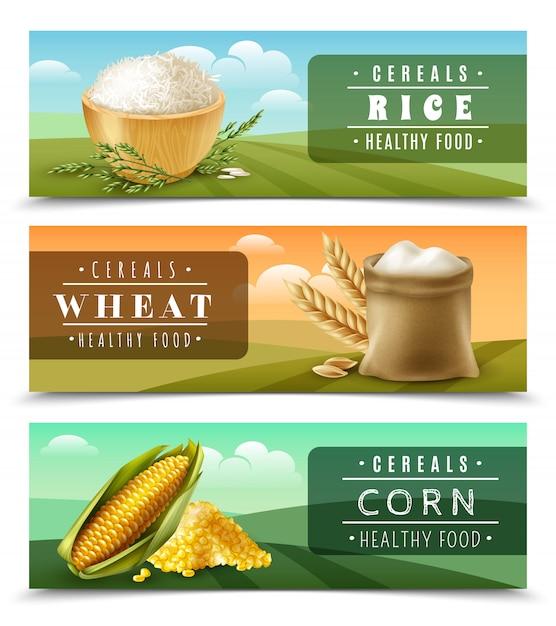 Szablon ustaw baner zbóż Darmowych Wektorów
