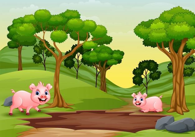 Szczęśliwe świnie Widzą Kałużę Błota I Chcą Się Bawić Premium Wektorów