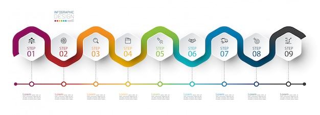 Sześciokątna etykieta z kolorową linią infografiki Premium Wektorów