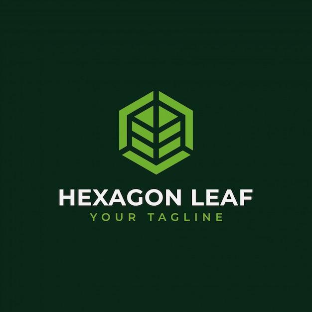 Sześciokątny Liść, Eco, Ogród, Botanika, Logo Natury Premium Wektorów