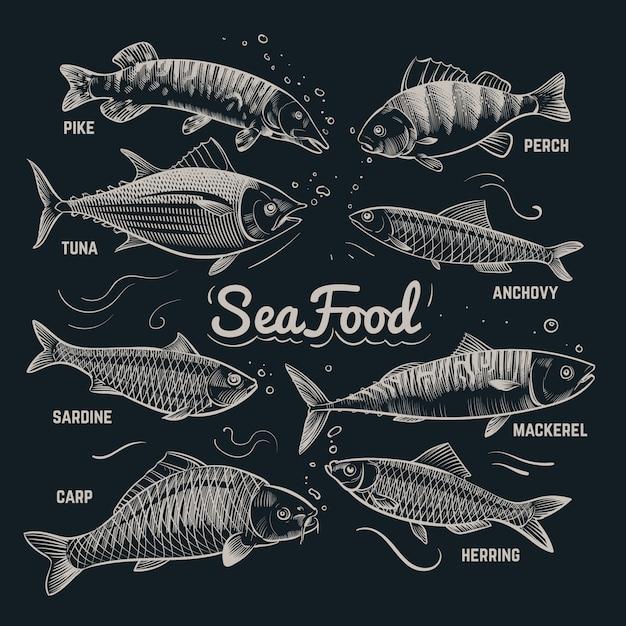 Szkic Ryby Owoce Morza. śledź, Pstrąg, Flądra, Karp, Tuńczyk, Szprot Ręcznie Rysowane Kontur Kolekcja Ryb W Stylu Vintage Premium Wektorów